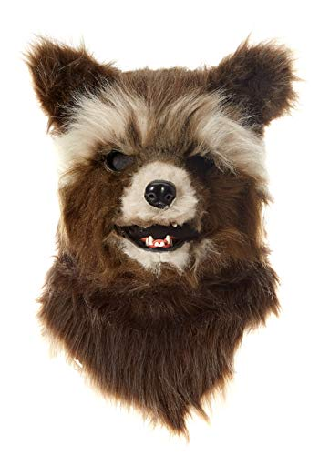 with Rocket Raccoon Costumes design