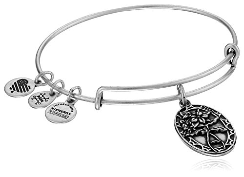 Alex and Ani Because I love you, Friend II Expandable Bracelet