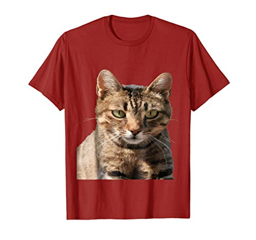 (Portrait Of A Cute Tabby Cat With Eye Contact Vector T-Shirt)