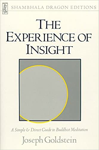 THE EXPERIENCE OF INSIGHT EBOOK