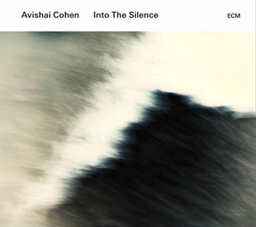 Avishai Cohen - Into The Silence cover