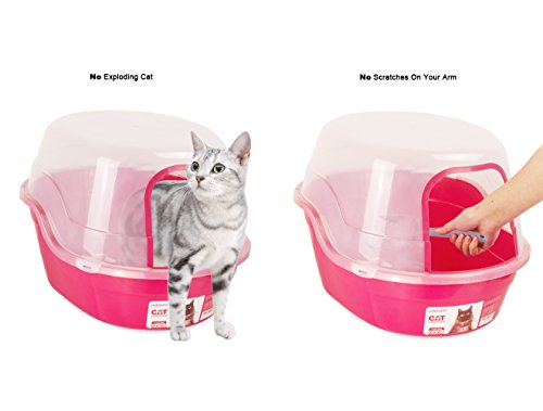 Best Rated Dog Litter Box