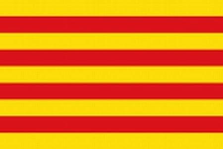 Desconocido Bandera catalana de Estados Unidos, catalizador catalán Barcelona España La Senyera: Amazon.es: Jardín