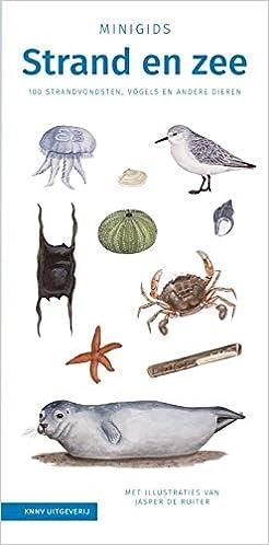 Goede Minigids Strand en zee: 100 strandvondsten, vogels en andere KX-77
