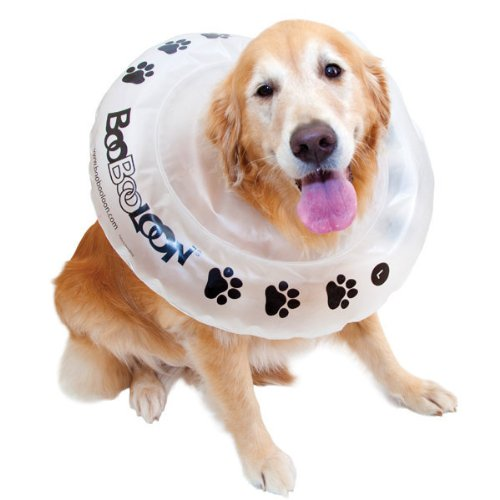 BooBooLoon Recovery Collar Inflatable - XL