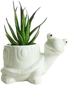 Youfui Cute Animal Succulent Planter Flower Pot Decor for Home Office Desk Turtle
