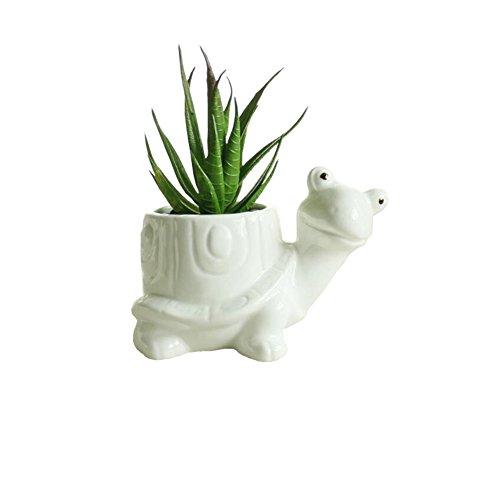 Turtle Pot (Youfui Cute Animal Succulent Planter Flower Pot Decor for Home Office Desk (Turtle))