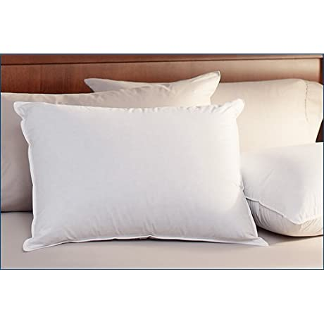 Pacific Coast Down Chamber Pillow Queen Size
