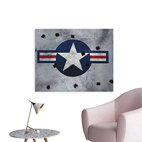 Anzhutwelve Airplane Photographic Wallpaper Star on Round Circle with Stripes with Grunge Effect Backdrop Aircraft The Office Poster Red Grey Blue White W32 xL24]()
