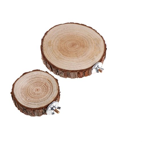 Nodykka Pet Parrot Bird Squirrel Dragon Cat Round Wooden Coin Platform Springboard Perches Cage Play Toys Stands Chew Toy for Birdcage Accessories(2pc, wood) ()