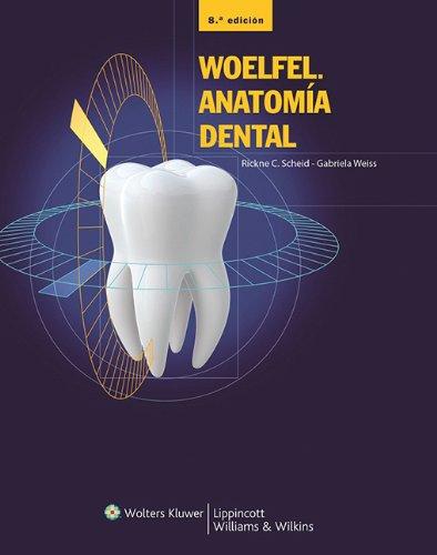 Woelfel. Anatomía dental: Amazon.es: Scheid: Libros