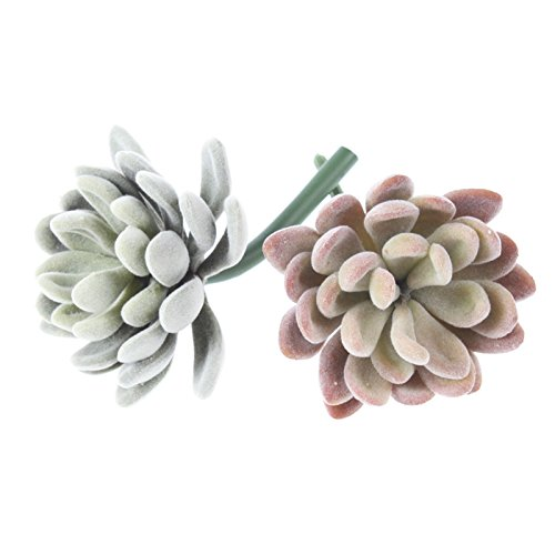 Neomark Assorted Realistic Cute Green Home Garden Faux Artificial Succulent Cactus Plants Unpotted (2 different colors)