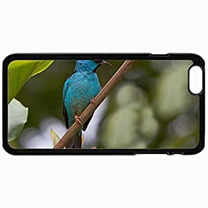 Customized Cellphone Case Back Cover For iPhone 6, Protective Hardshell Case Personalized Bird Black
