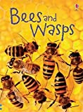 Bees and Wasps (Beginner's Nature)