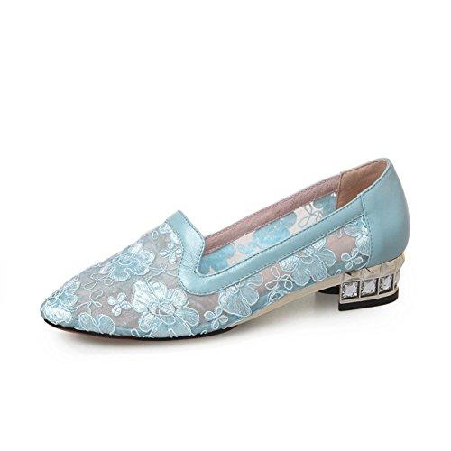 Light Blue Dress Shoes (VASHOP Womens Ballet Lace Mesh Flats Slip On Casual Dress Shoes,Light Blue/8)