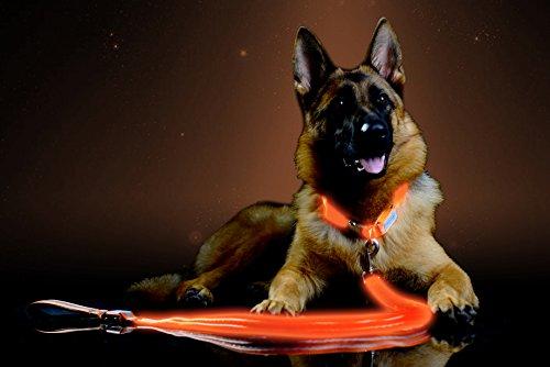 Pet Industries Premium LED Reflective Dog Leash, USB Rechargeable, Available in 6 colors (Aerospace Orange) ()