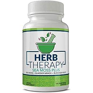best-alkaline-supplements-detox-sea-moss-plus