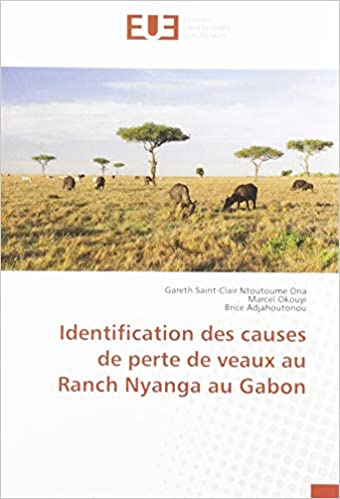 Identification des causes