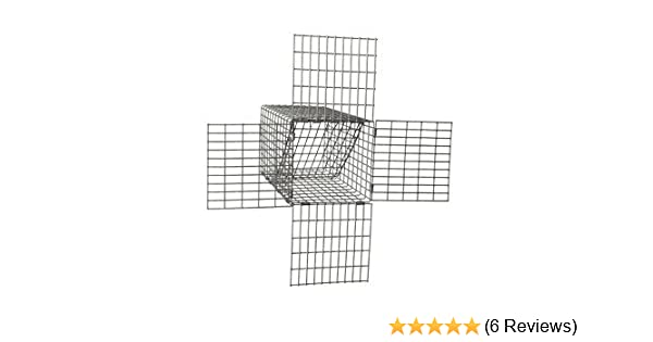 step by step diagram for live bird traps wiring diagram online  amazon com one way small animal excluders (5\\\