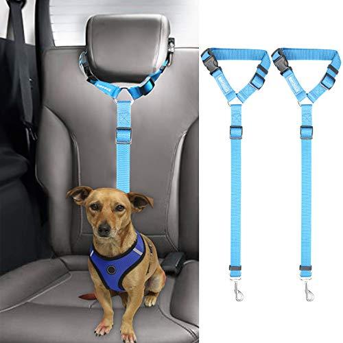 2 correas cinturon de seguridad perros auto azul