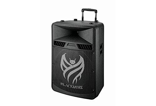Amplified Loudspeaker - 8