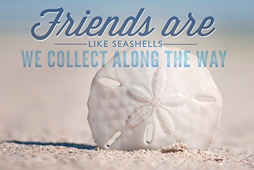 (Friends are Like Seashells - Sand Dollar (12x18 SIGNED Print Master Art Print w/Certificate of Authenticity - Wall Decor Travel Poster))