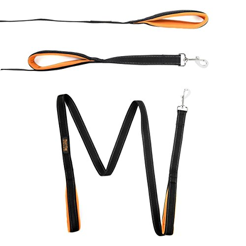 Mighty Paw HandleX2, Dual Handle Dog Leash - 6 Feet, Premium Quality Reflective Leash with 2 Handles. - 2 Day Lead