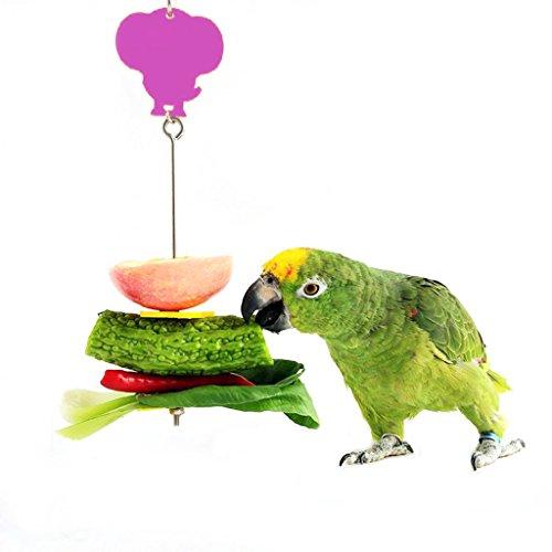 Bwogue Bird Parrot Treat Holder Stainless Steel Fruit Veg...