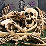 41rtVjj4pTL. SL160   DELUXE HALLOWEEN BAG OF SKELETON BONES   FULL 28 PIECE SET   PERFECT FOR A HALLOWEEN GRAVEYARD or HAUNTED HOUSE