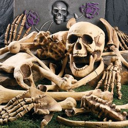 Fun Express Bag of Skeleton Bones - 28 Piece Set (Skeletons Halloween)