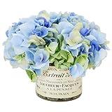 Green Hydrangea Bouquet in a French Label Pot Color: Blue / Cream