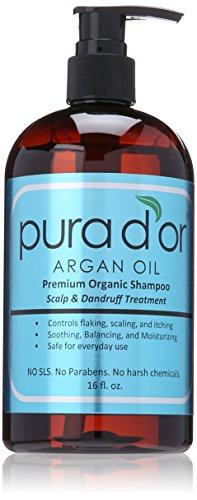 PURA D'OR Scalp & Dandruff Premium Organic Argan Oil Treatment Shampoo, 16 Fluid Ounce (Discontinued Packaging)