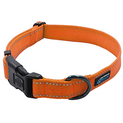 Max and Neo NEO Nylon Buckle Reflective Dog Collar - We Donate a Collar to a Dog Rescue for Every Collar Sold (Small, Orange)