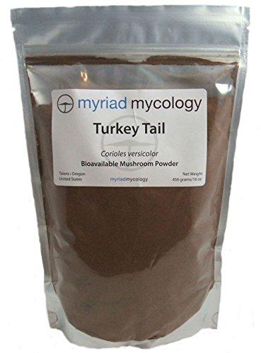 Myriad Mycology Turkey Tail Mushroom Powder 16oz or 1lb, Made in USA / Yun Zhi, 456g by Myriad Mycology