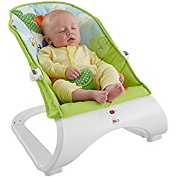 64043cd9770 Fisher-Price Rainforest Friends Comfort Curve Bouncer