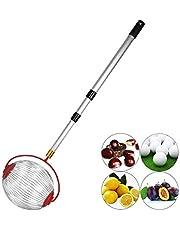 Nut Collector Gatherer, Fruit Picker Walnut Chestnut Farmer Market Harvester, Roll Garden Lawn Outdoor Manual Tool, Acorn Pine Cone Golf Ball with Adjustable Lightweight Telescopic Rod (Large-13Inch)
