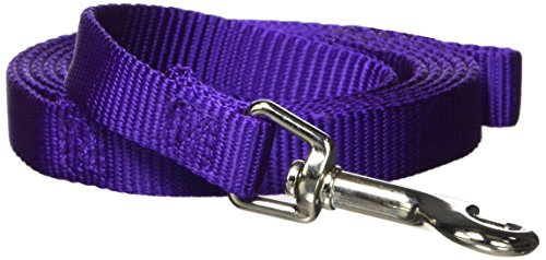 Hamilton Single Thick Deluxe Nylon Lead with Swivel Snap, 5/8-Inch by 6-Feet, Purple