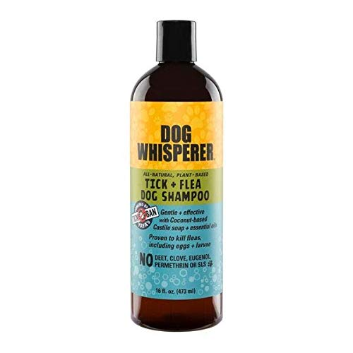 YAYA ORGANICS Dog Whisperer Tick + Flea Dog Shampoo, Proven Effective, All-Natural, Gentle with Coconut-Based Castile Soap and Essential Oils (16 Ounces) (Best Shampoo To Get Rid Of Fleas On Dogs)