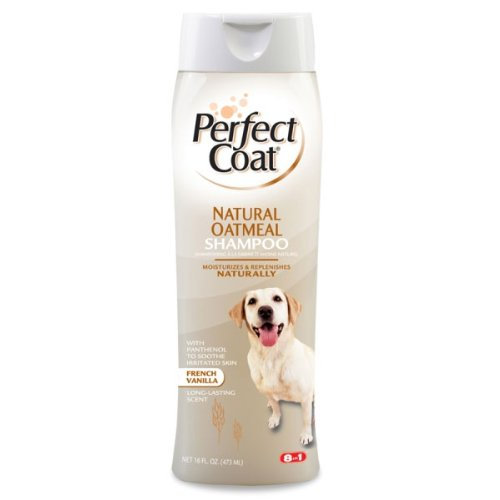 8in1 Perfect Coat Natural Oatmeal Shampoo – French Vanilla – 16 oz, My Pet Supplies