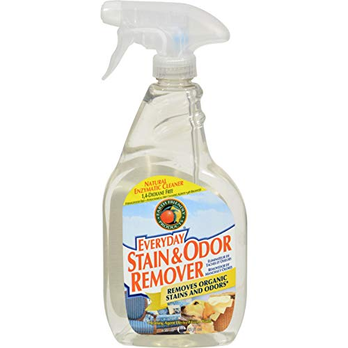 (Earth Friendly Stain and Odor Remover Spray - 22 fl oz)