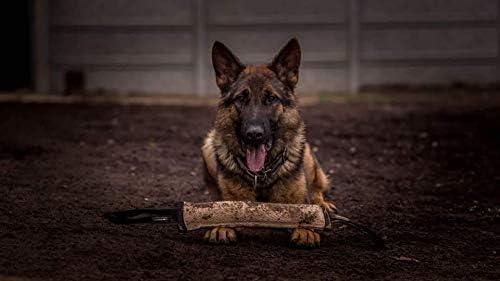Morsi in iuta con supporto K9 IGP IPO addestramento per cani 40 cm x 6 cm Dingo Gear S00147