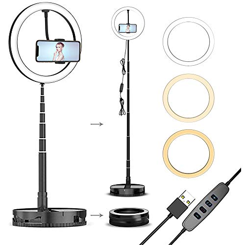 Portable Ring Light with Stand and Phone Holder, 10 inch Small Ring Lights Foldable, Desktop and Floor Circle Light for iPhone Selfie Photo Streaming Video Recording Makeup