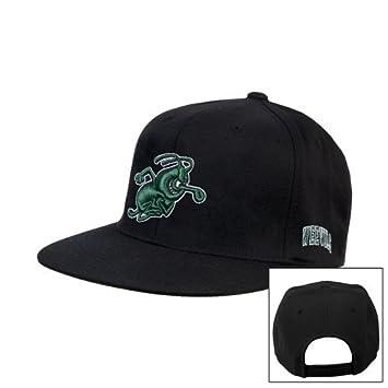 Amazon.com   Arkansas Monticello Black Flat Bill Snapback Hat  Weezy ... 33220956553