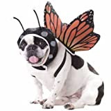 Animal Planet PET20101 Butterfly Dog Costume, X-Small