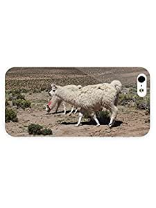 3d Full Wrap Case for iPhone 5/5s Animal Llama