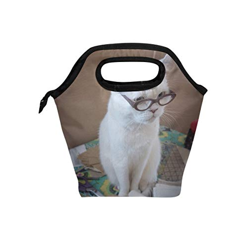 Lunch Box Funny Cats Womens Insulated Lunch Bag Kids Zipper Lunch Tote