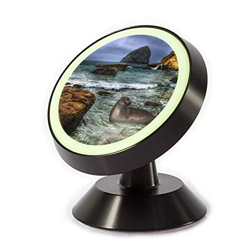 Car Phone Mount Holder Sea Lions Harbor Seal 360° Rotation Magnetic Car Phone Holder Universal with Super Strong Magnet -