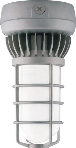 RAB VXLED13DG Vapor Proof LED Outdoor Close Ceiling (Glass Shot Fan)