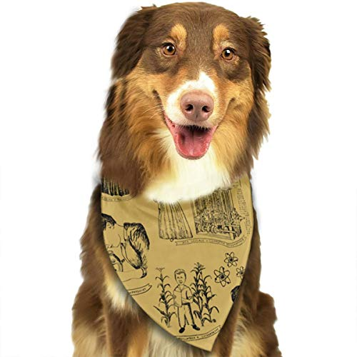 OURFASHION Notable Women Scientists Toile Bandana Triangle Bibs Scarfs Accessories for Pet Cats and Puppies.Size is About 27.6x11.8 Inches (70x30cm). ()