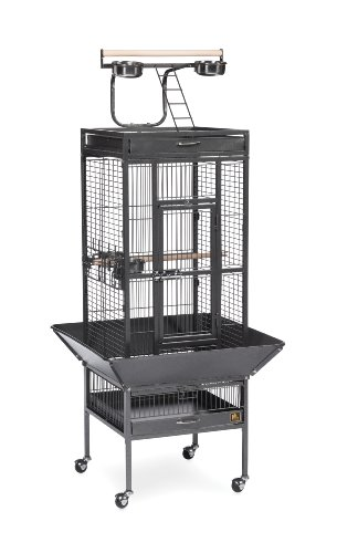 Prevue Pet Products Wrought Iron Select Bird Cage Black Hamm